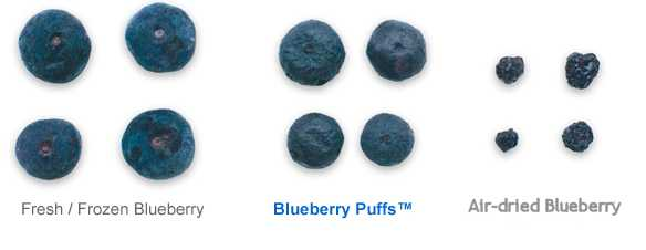 kinds of blueberries